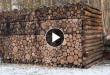 pilha-de-madeira