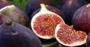 figo_fruta